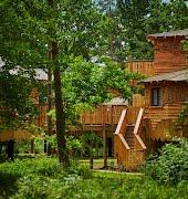 Center Parcs Ireland announces €85 million expansion plan including new luxury treehouses