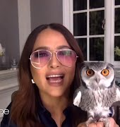 Salma Hayek's pet owl threw up on Harry Styles' hair, and we have so many questions