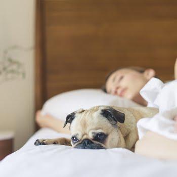 Sleep cycle during Covid-19
